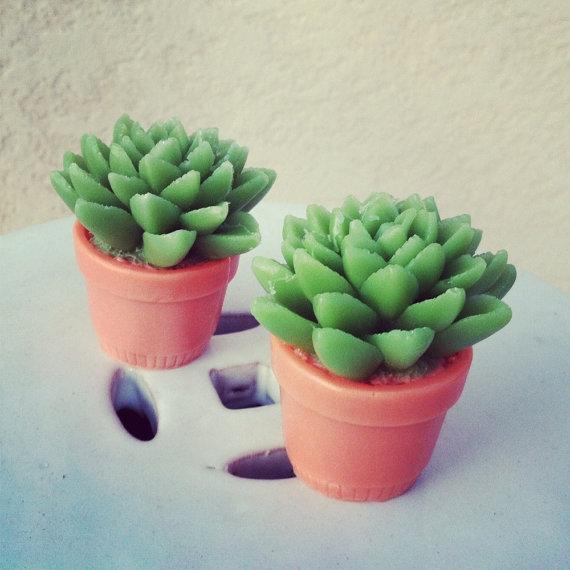 10 Cactus Gift Ideas