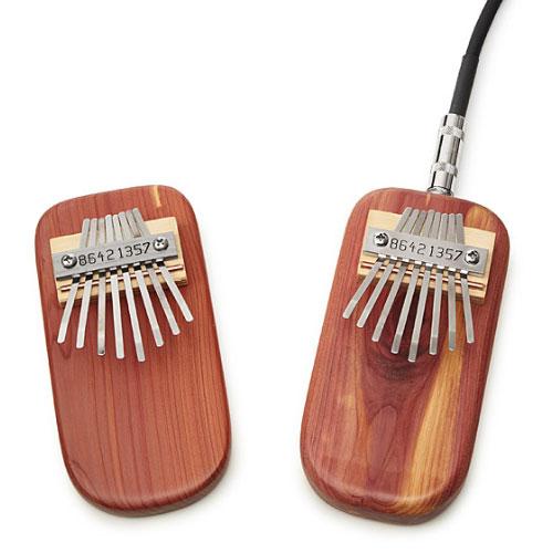 Weird Musician Gift Ideas