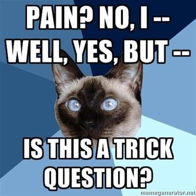 pain trick question meme chronic illness chronic illness memes for those fighting a chronic condition all,Chronic Illness Cat Meme