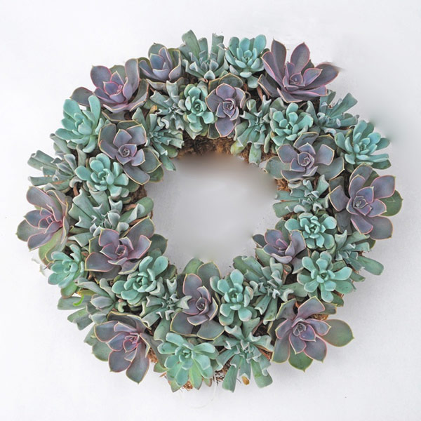 Organic Christmas Wreath with Succulents