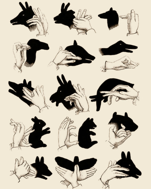 How to make shadow puppets illustration