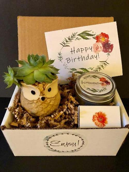 Cactus Birthday Box
