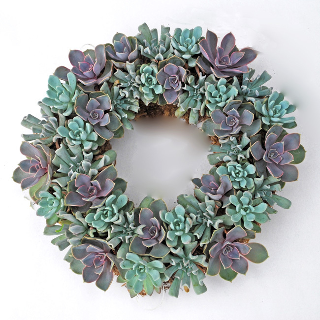 Organic Wreaths - Mother's Day Gift Ideas