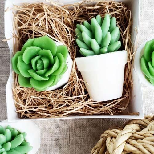 Cactus Soap Gift Ideas