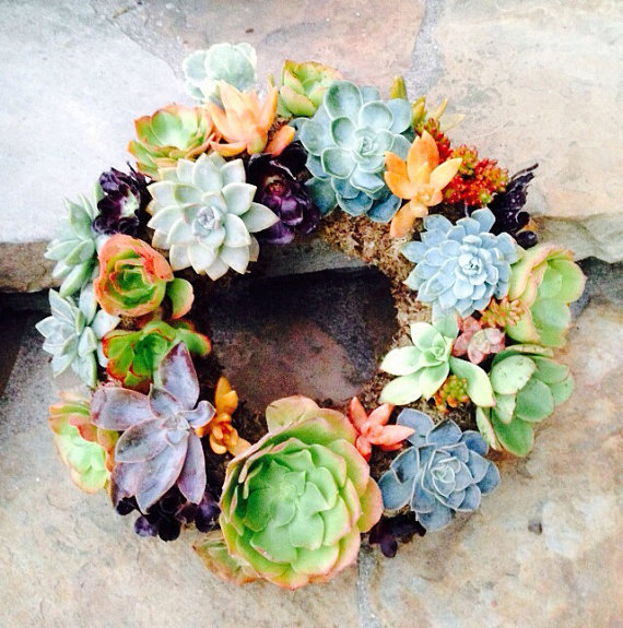 Succulent Wreaths for Mother's Day