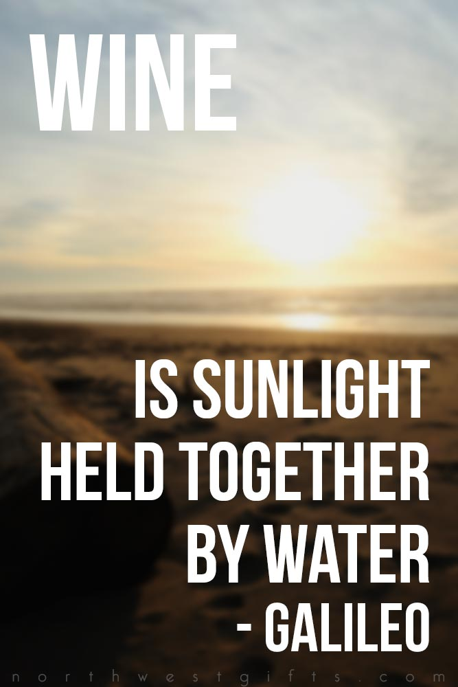 Galileo Wine Quotes