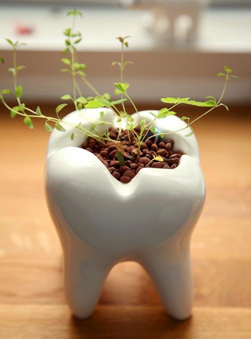 Dentist Office Gift Ideas