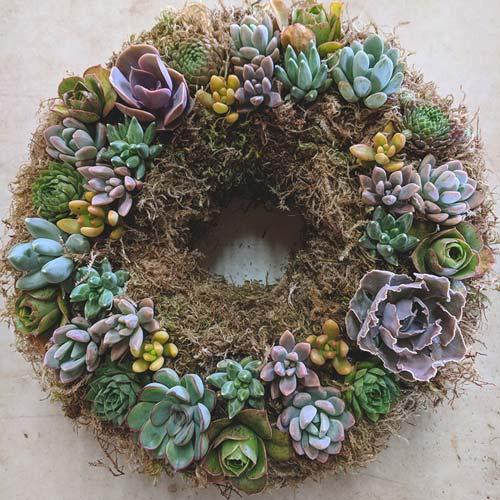 Organic Succulent Wreath