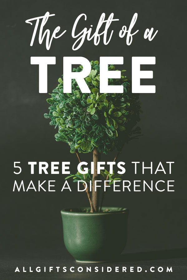 Giving a tree as a gift