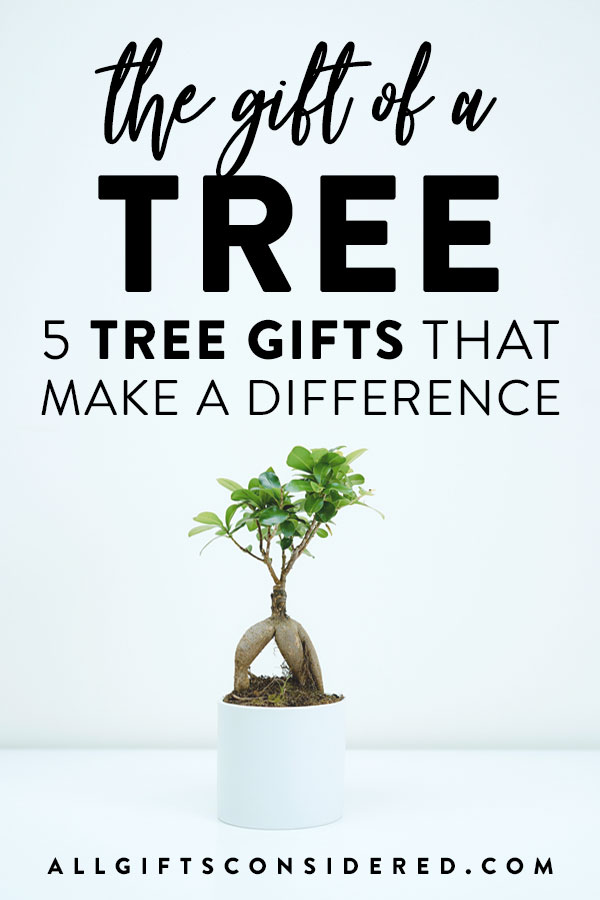 5 Great Tree Gifts That Make a Difference