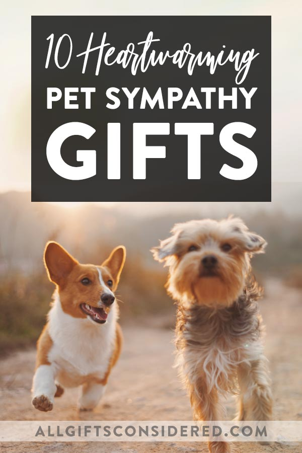 10 Heartwarming Pet Sympathy Gifts