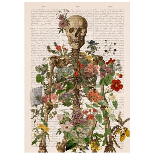Floral Art Print for the Doctor Who Has Everything