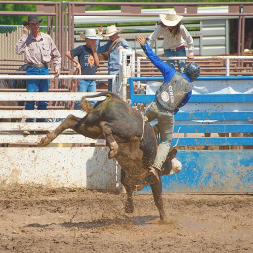PBR Event Gift for Bull Riders and Ranchers