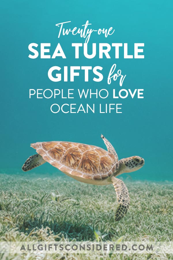 Creative Gifts for Those Who Love Sea Turtles & All Ocean Life