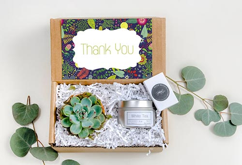Succulent gift box ideas