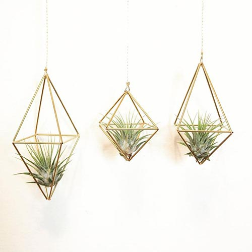 Geometric plant hanger mens gift idea