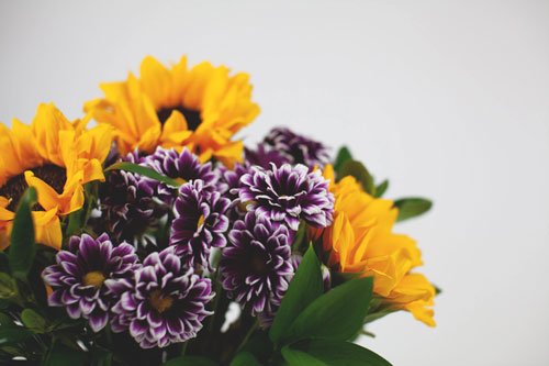 Amazing Clubs: Flower of the Month Club