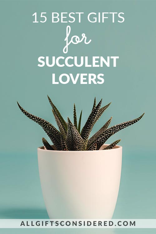 15 Amazing Gifts for Succulent Lovers