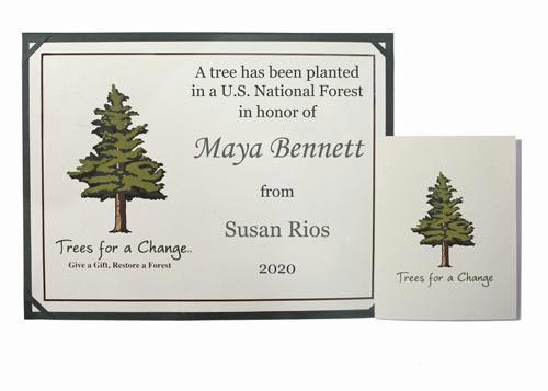 Trees for a Change for Their 50th Birthday Gift