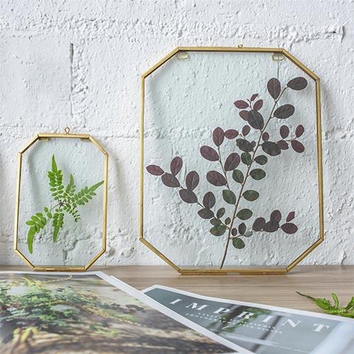 Dry Flower Frames