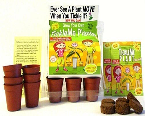 Gardening Gifts for 9 Year Olds