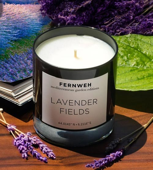 Exotic Candles- Lavender Fields