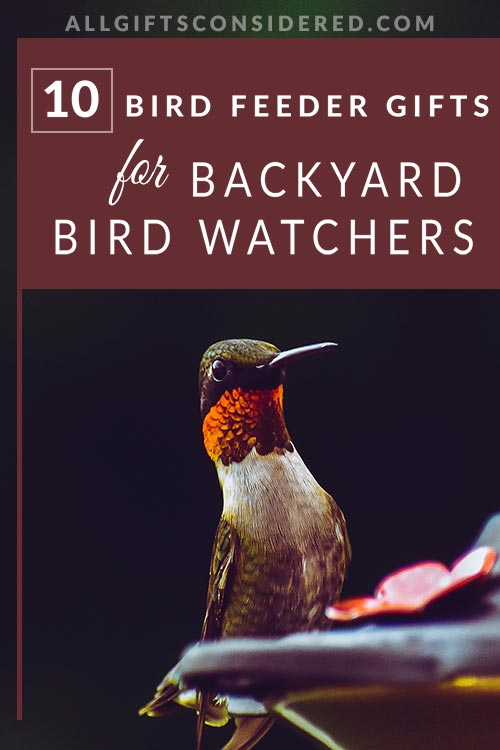 10 Amazing Gifts for Bird Watchers