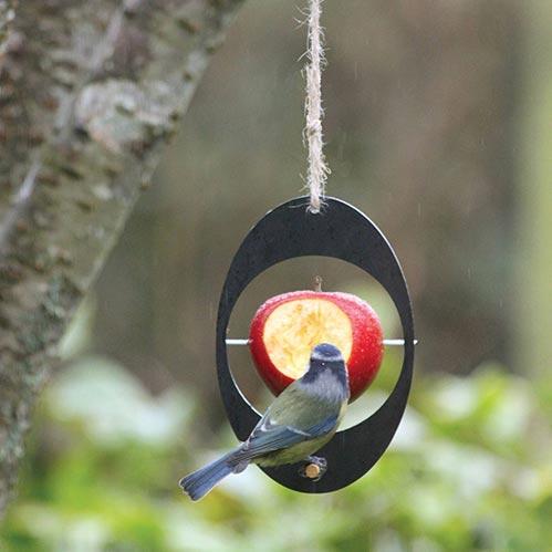 Recycle-friendly Bird Feeder