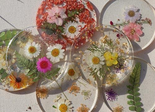 Best Pressed Flower Coasters