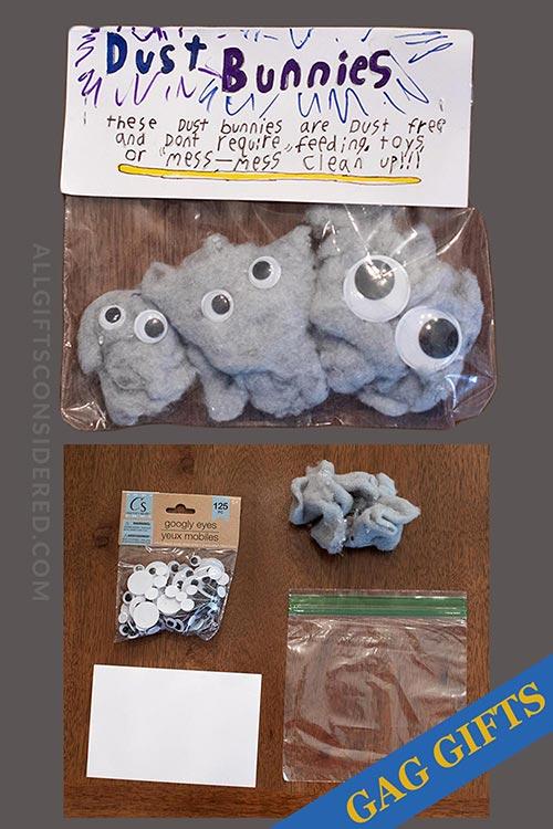 Dust Bunnies Pets