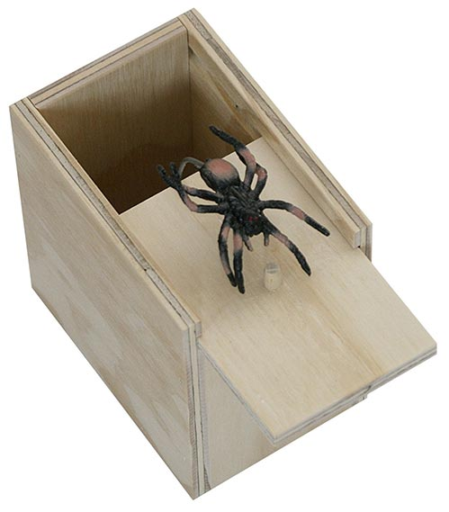 Scary Spider Trap