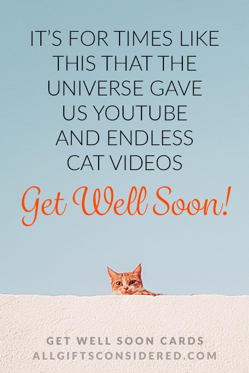 Funny Get Well Soon Cards: Endless Cat Videos