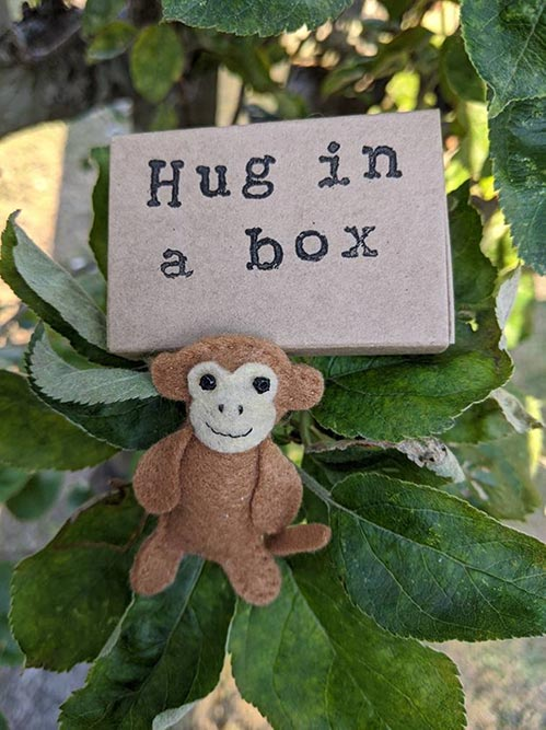 Hug in a Box Toy