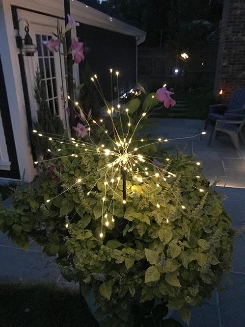 LED Fairy Garden Lights