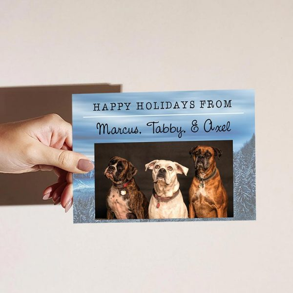 Template Photo Holiday Customizable Greeting Card: Happy Holiday Pets