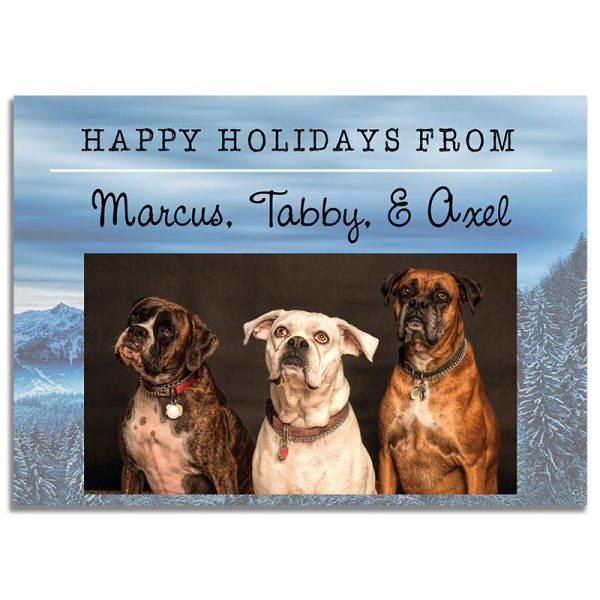 Downloadable Christmas Greeting Card: Happy Holiday Pets