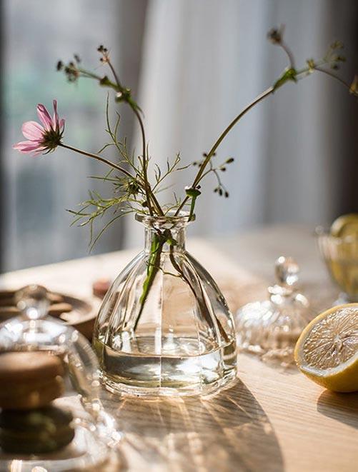 Simple and Elegant Glass Vases