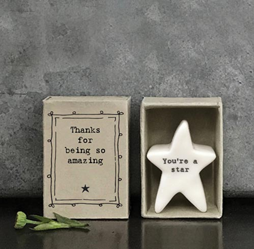 Thanks for Being Amazing - Star Statue