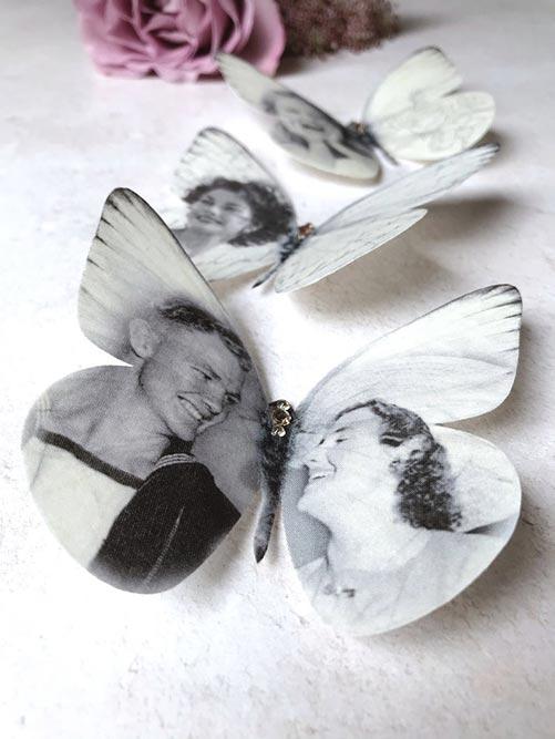 Silk Butterfly Portraits